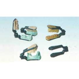 Capri Disposable Articulators 10/Pk