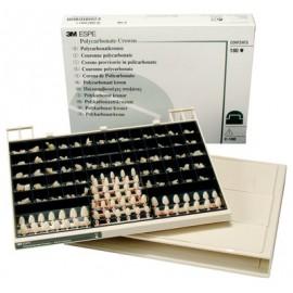 3m Espe Polycarbonate Crowns