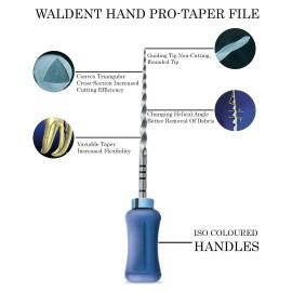 Waldent ProTaper Hand Files