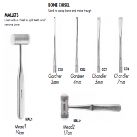 Gdc Bone Chisel And Mallet