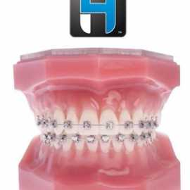 Ortho Classic Typodont - H4 Metal Self Ligating Brackets