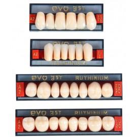 Ruthinium Acry Plus EVO -3 layer Acrylic teeth