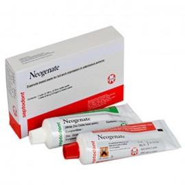 Septodont Neogenate Impression Paste